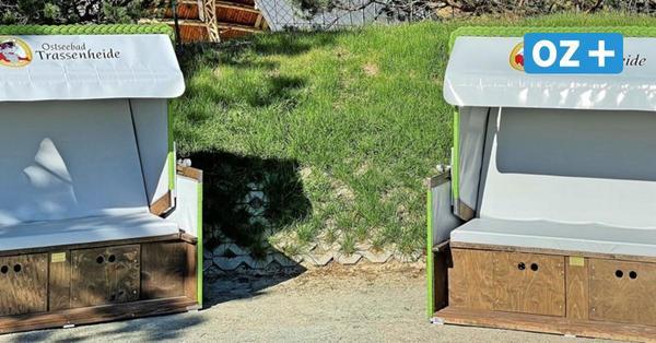 Neue Hingucker auf der Promenade: Drei XXL-Strandkörbe für Trassenheide