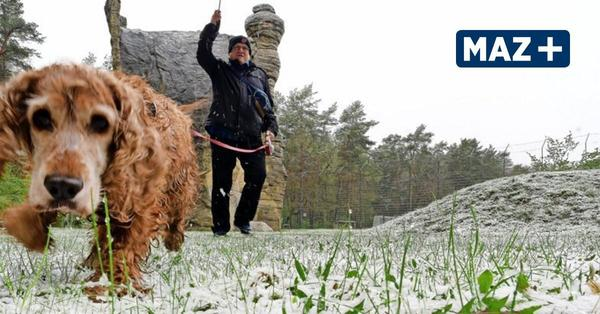 Schnee über Potsdam im Mai: Das gab es zuletzt 1969