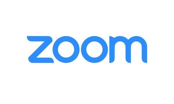 Zoom seemingly granted access to private iPad camera API