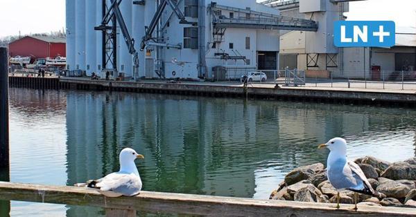 Heiligenhafen: Bund zahlt 700.000 Euro für die Vertiefung der Hafenzufahrt