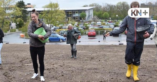Plön: Neue Blühwiese soll auch zum Klassenzimmer werden
