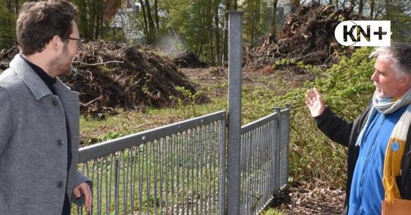 Neumünster: Minister Albrecht ärgert sich über Baumfrevel