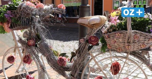 Buga 2025 in Rostock: Bad Doberan möchte Außenstandort werden