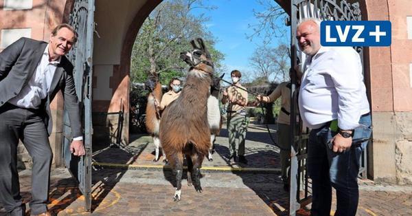Leipziger Zoo öffnet nach sechs Monaten seine Tore wieder