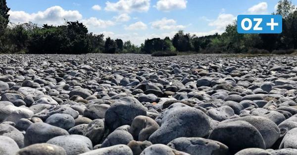 Rügen Tipps fürs WochenendeFeuersteinfelder, Hexenwald und im Roland durch die Granitz