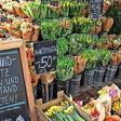 Lockerungen für Corona-Geimpfte und Genesene: Das könnte sich für Brandenburg ändern