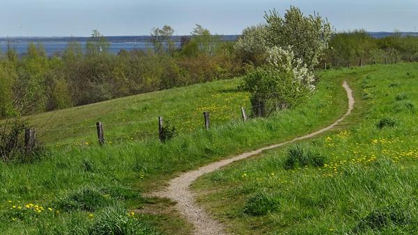 Blick auf den Wanderweg am westlichen Stadtrand  (Foto: Helmut Kuzina)