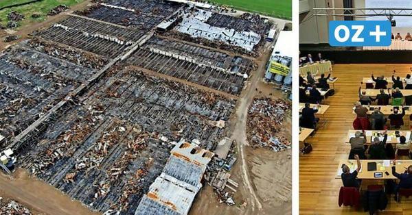 Nach Brand in Alt Tellin: Politiker in Vorpommern-Greifswald fordern Ende der Massentierhaltung
