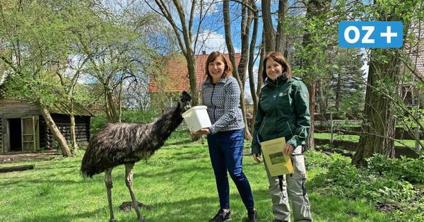 Tierpark Grimmen: Marita Koch und Bindi bilden schnellstes Duo