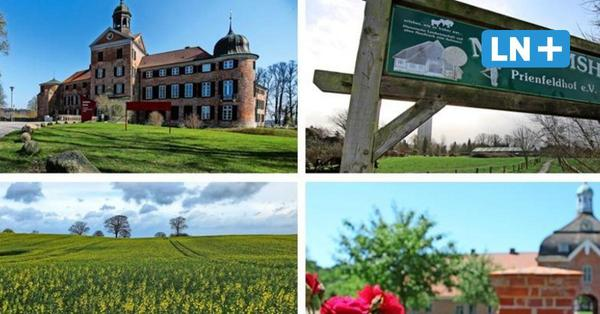 Zoo, Schloss, Museumshof: Ausflugstipps fürs lange Wochenende
