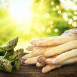 Spargel: Die leckersten Rezepte und alle Infos zum gesunden Gemüse