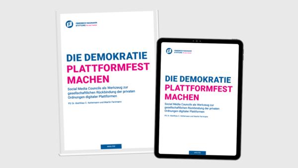 Plattformräte: Die Demokratie plattformfest machen