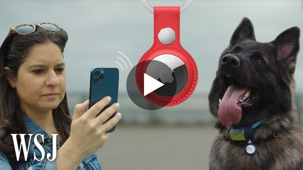 Apple AirTag vs. Drug-Detection Dog: Best Way to Find Your Lost Stuff   WSJ