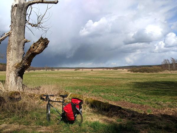 Die Tour führt am Rambower Moor entlang. Foto: Lars Sittig