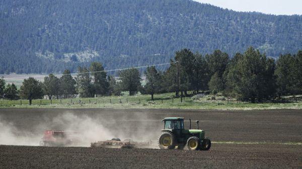 Die Angst vor der Dürre: US-Landwirten droht massive Wasserknappheit