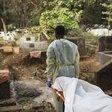 Covid-19 kills 253 in Ashanti region
