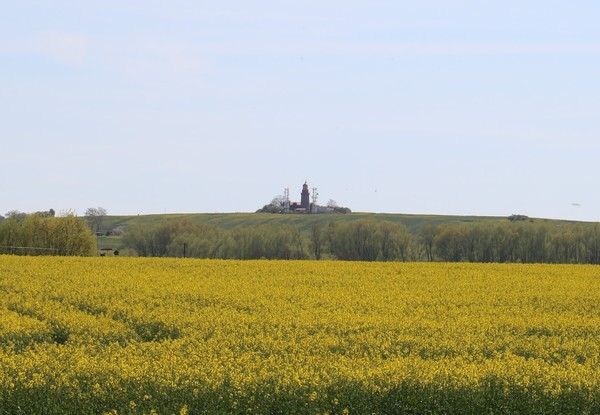 Während des Rundweges ist der Bastorfer Leuchtturm zu sehen. (Foto: Anja Levien)