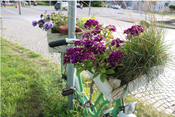 Das Blumenfahrrad steht am Alexandrinenplatz. (Foto: Anja Levien)