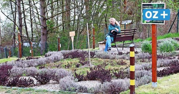 Schöner Ausflugstipp für Hobbygärtner: Der Knotengarten von Nakenstorf