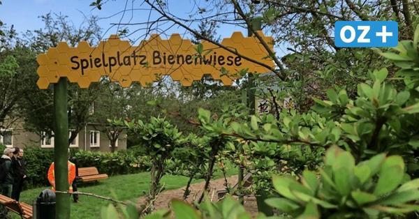 Wismar: Das gibt es auf dem neuen Spielplatz Bienenwiese zu entdecken