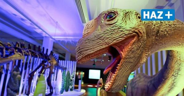 Museen bereiten sich auf Öffnung nach Corona-Schließung vor