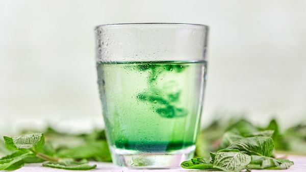Chlorophyll-Wasser: Warum ein Ernährungsmediziner vom Tiktok-Hype abrät