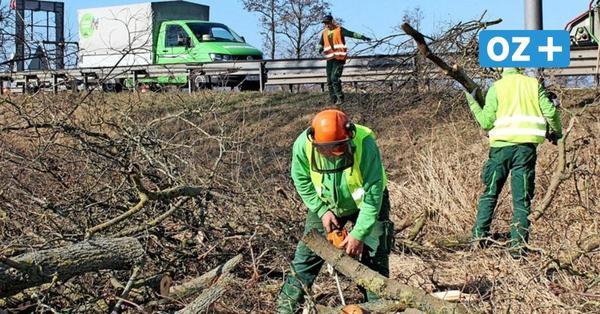 Infrastrukturminister Pegel: Bau der Ortsumgehung Wolgast beginnt im Sommer
