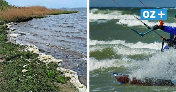 """Groß Strömkendorfer wollen keine Surfer mehr:""""Wir haben es satt"""""""