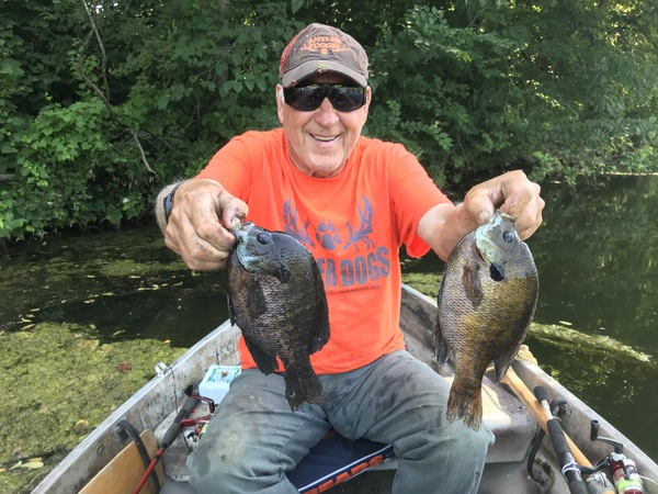 Roger Sigler catches big bluegills from ponds in northern Missouri. (photo by Brent Frazee)