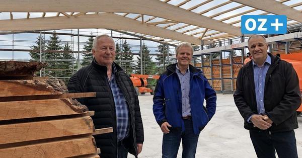 Greifswald: Holzfachhandel investiert trotz Krise – Steigende Preise belasten Verbraucher