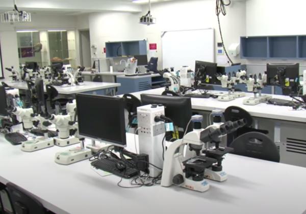 Videos: A Sampling of Virtual Lab Tours   The Scientist Magazine®