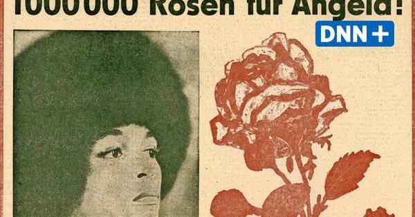 Heldin des anderen Amerika:Angela-Davis-Ausstellung in Dresden