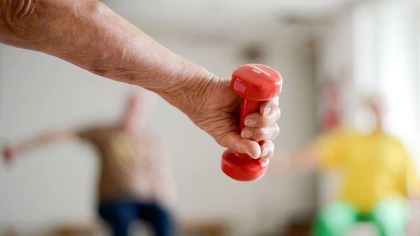 Muskelschwund: Mit Krafttraining und proteinreicher Ernährung entgegenwirken