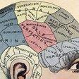 La  frenología muestra cómo se afianza la pseudociencia