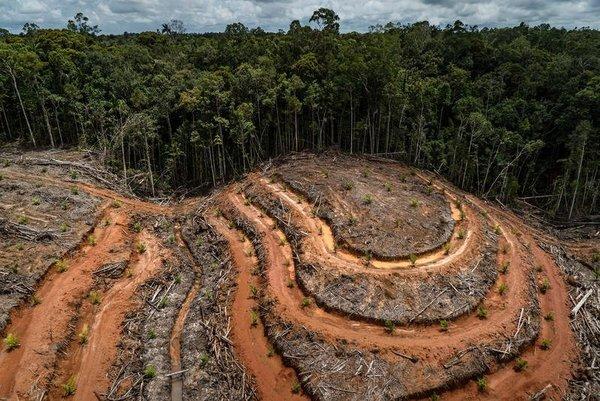 Colombia, SDG15: Los retos de la agricultura colombiana frente al cambio climático