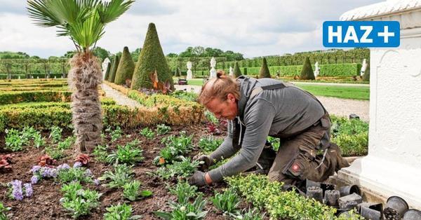 So bereiten sich die Herrenhäuser Gärten auf die Saison vor