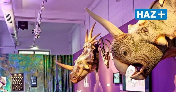Andrang bei den Sauriern: Hannovers Museen sind wieder geöffnet