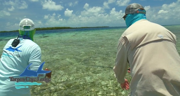 Flats Fly Fishing at Tarpon Caye Lodge in Belize