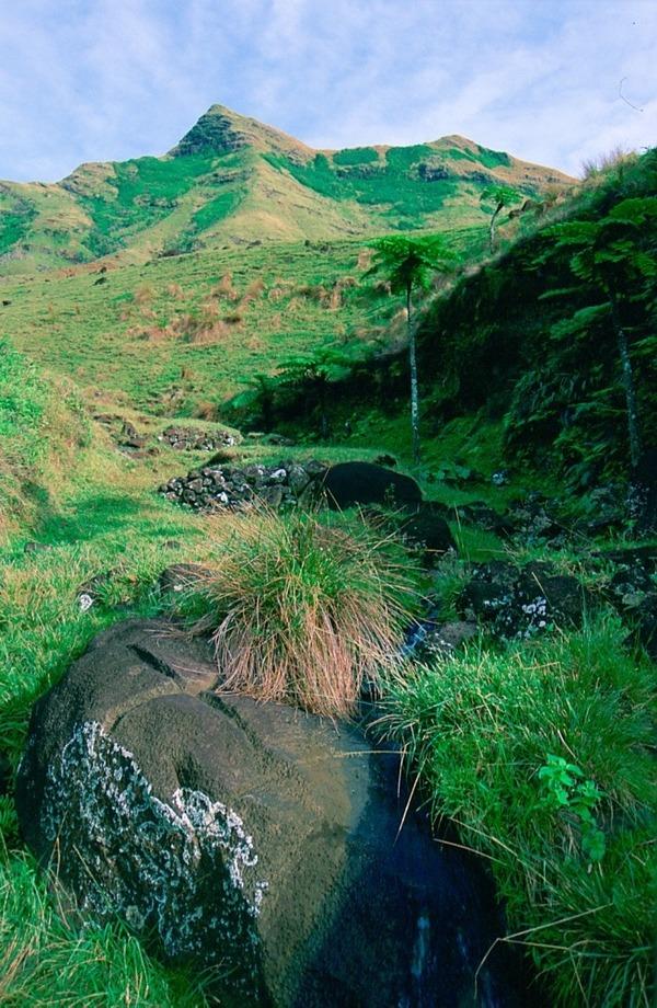 Pierre marquée d'une croix, située entre les monts Namuere et Tauru, dans la haute vallée de Tukou. (Photo © Jaume Bartroli, 1996)