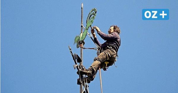 In 70 Metern Höhe: Kletterer überprüften den Münster-Wetterhahn in Bad Doberan
