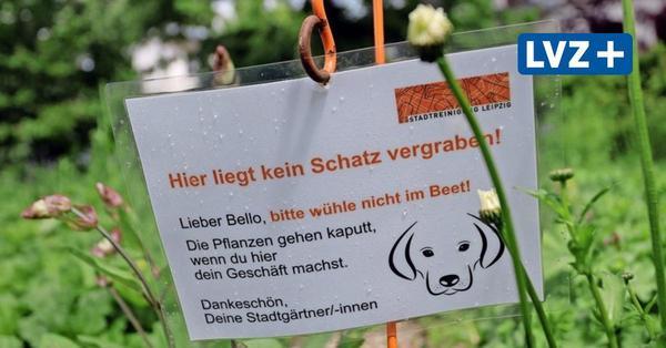 Leipzig möchte Hundekot den Kampf ansagen – mit laminierten Zetteln
