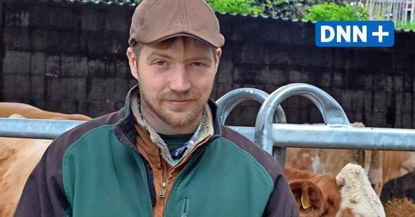 Ein Jahr beim Bio-Bauern: Wie Mist aus Kuhhörnern den Boden beleben soll