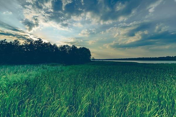 La province de Flandre Occidentale subventionne 26 projets locaux de développement durable. - Provincie subsidieert 26 lokale klimaatprojecten