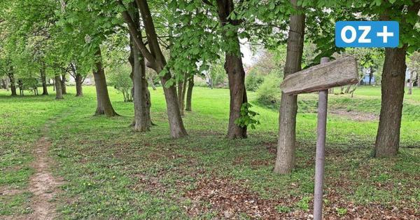 Süderholz: Große Pläne für Park in Rakow