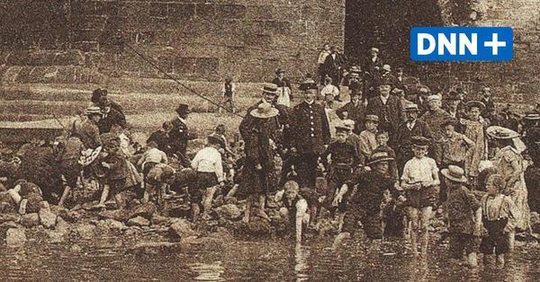 Die Elbe in Dresden:Lebensader in historischen Bildern