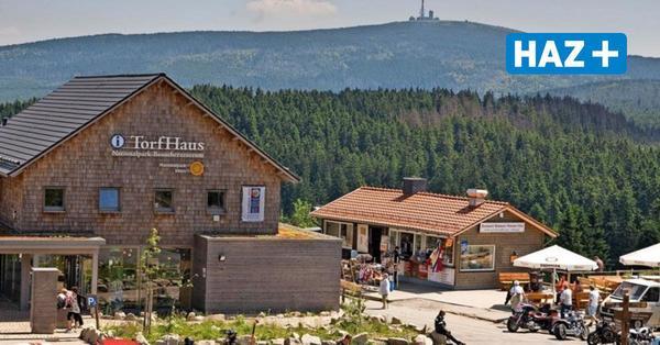 Mit Skywalk und Rutsche: Neuer Aussichtsturm im Harz geplant
