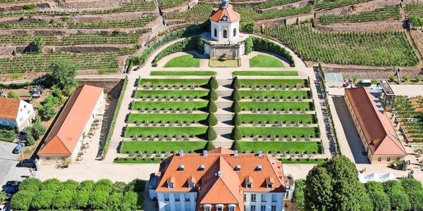 Dank sinkender Inzidenz: Weinsommer auf Gut Wackerbarth beginnt