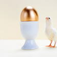 Research: What Do People Need to Perform at a High Level? | Harvard Business Review