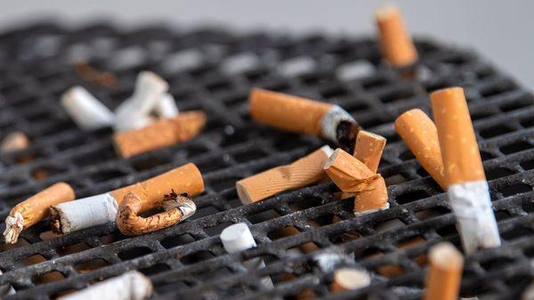"""Tabakprävention: WHO bezeichnet Deutschland als """"Sorgenkind"""" – und empfiehlt höhere Preise"""