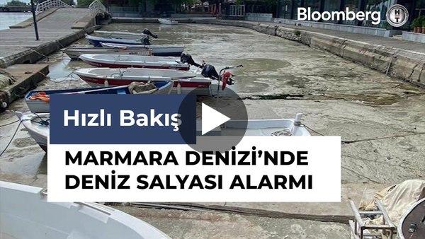 Marmara Denizi'nde Deniz Salyası Alarmı | Hızlı Bakış
